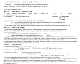 Contrat de travail PRESTATAIRE – CDD à terme précis (rose) – Réf. 85-305